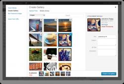 INSTRUÇÕES BÁSICAS DE UTILIZAÇÃO DO WORDPRESS criar galeria de fotos wordpress