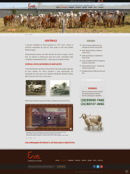 gir-eva-fazenda-do-cortume-curvelo-historico