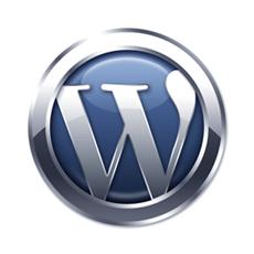 icons-wordpress