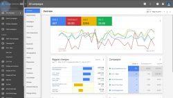 Google Adwords Interface